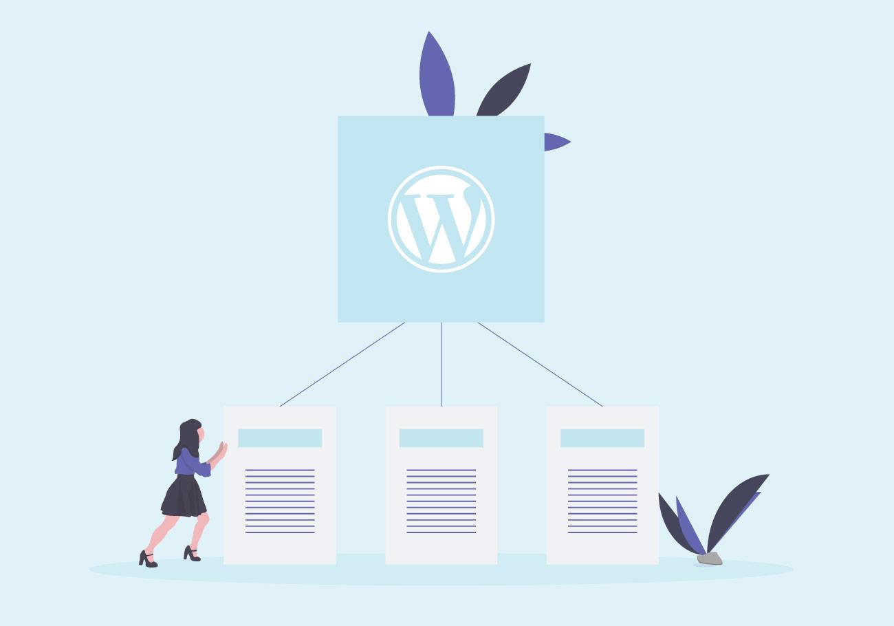 WordPress editor příspěvků