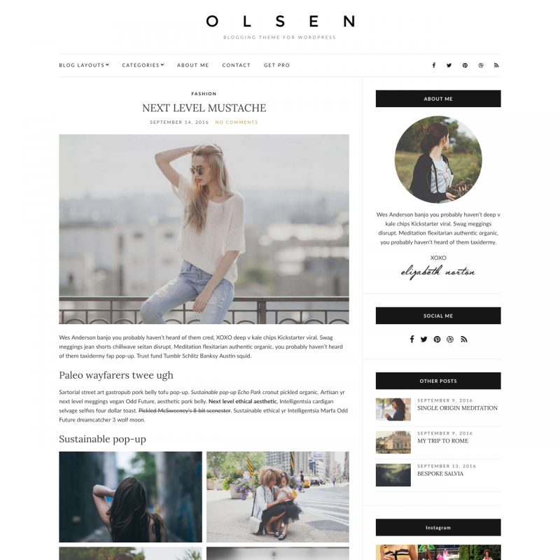 WordPress šablona Olsen Light