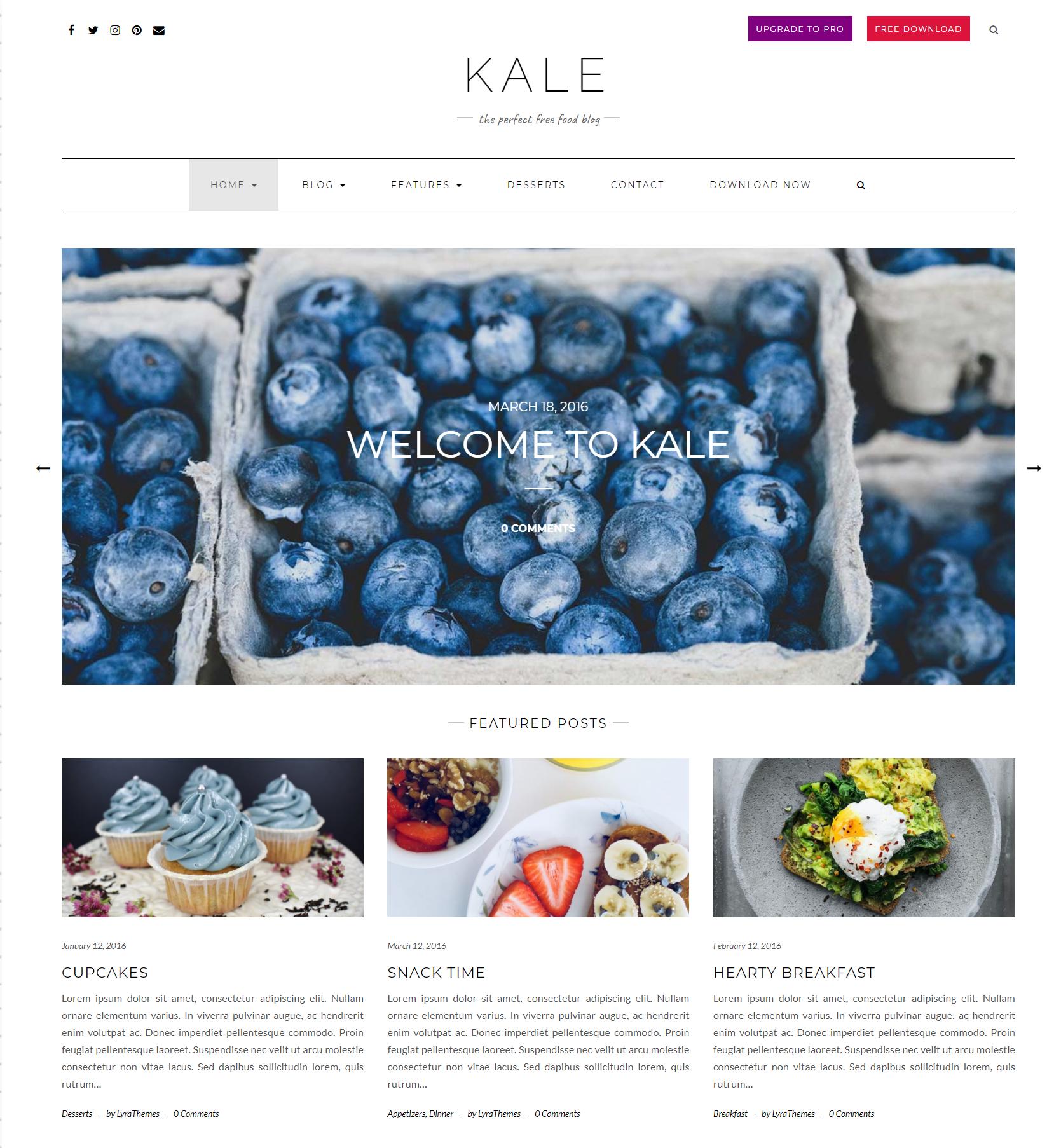 WordPress šablona Kale